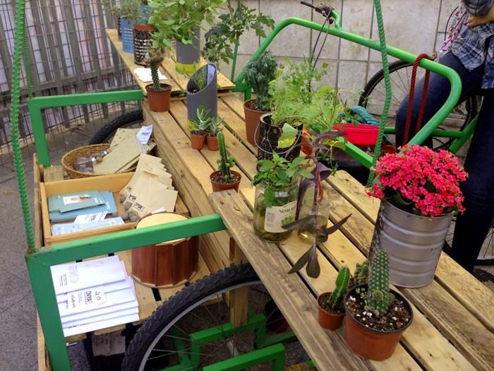 צמחים שמשמחים את הסביבה- קולקטיב אנייה. צילום: הדס שניידר