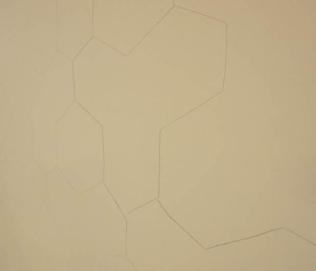 מציירים בעיפרון באמצעות השבלונה