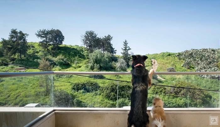 חיבור אל הטבע והכפר<br/>צילום: עומרי אמסלם