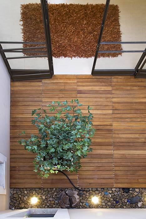 הפאטיו משמש כמקור אור ומשרה רוגע באמצעות צמחייה וחלוקי נחל, (צילום: שי אפשטיין)