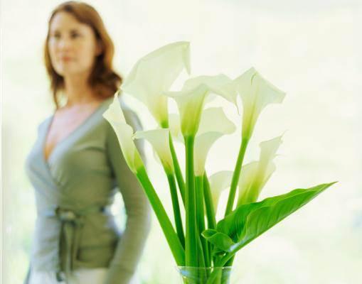 לעידוד זוגיות חדשה, כדאי לנשים להציב אגרטל ירוק עם פרחים לבנים בזווית המתאימה, לפי מפת האסטרולוגיה הסינית, (צילום: אילוסטרציה)