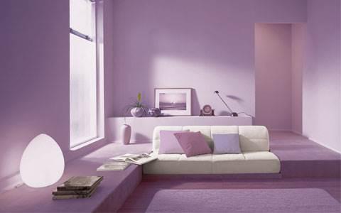 עיצובים בצבעים: סגול