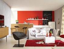 טרנדים בצבע: הגוונים המובילים בעיצוב הבית בצבע לשנת 2012-2013