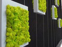 תערוכת עיצוב 2012: החידושים, הטכנולוגיות, העיצובים