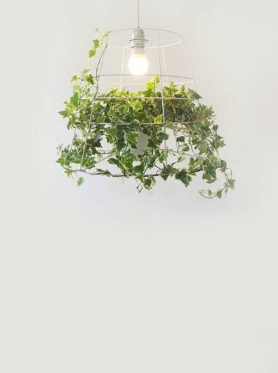 פוטוסינתזה- גוף תאורה מעוצב של מירב פלד ברזילי. צילום: יחצ. להשיג בסטודיו אסופה