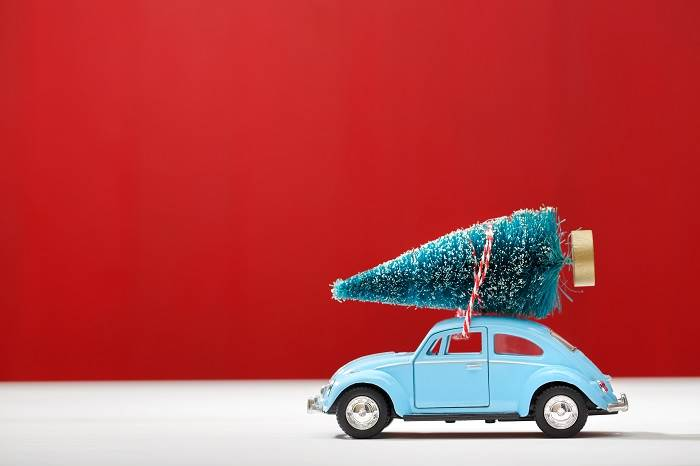 אדום סנטה קלאוס | צילום ניר עצמון
