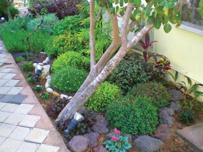 כחלק מהכנת גינה אקולוגית נהוג לחפות את האדמה בחיפויים שונים, העשויים מאבנים, שבבי עץ ואפילו עלים יבשים. תכנון גינה מאת איגלו-גארדן