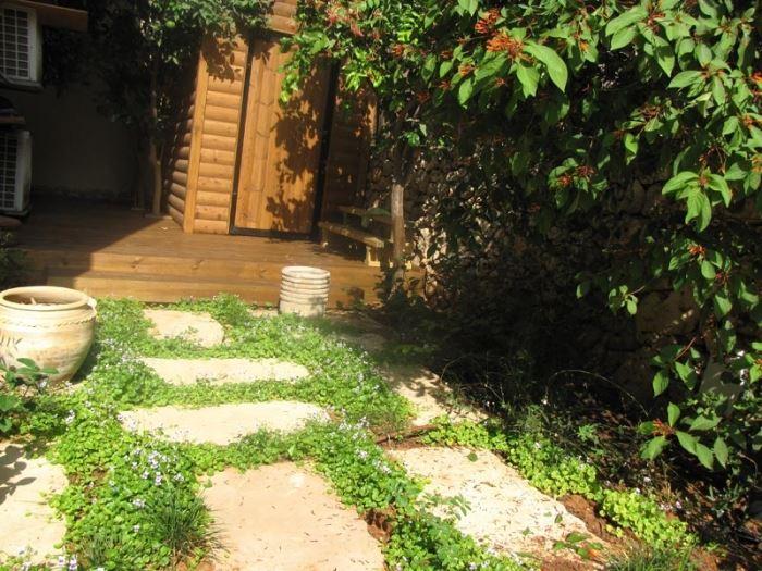 הגדלת שטח הריצוף ואבני המדרך על חשבון חלק מהצמחייה, מאפשרת חיסכון במים מבלי לפגוע בתחושה הירוקה מסביב (צילום: רויטל לוריא)