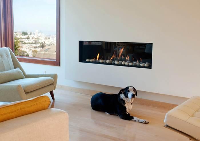 אפילו הכלב יכול להתחמם בנחת- קמין מעוצב לסלון