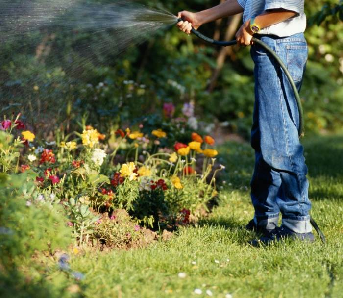 """""""יצירת קבוצות צמחייה בעלות צריכת השקיה דומה על אותו קו השקיה, תאפשר השקיה יעילה וחסכונית יותר"""", (צילום: אילוסטרציה)"""