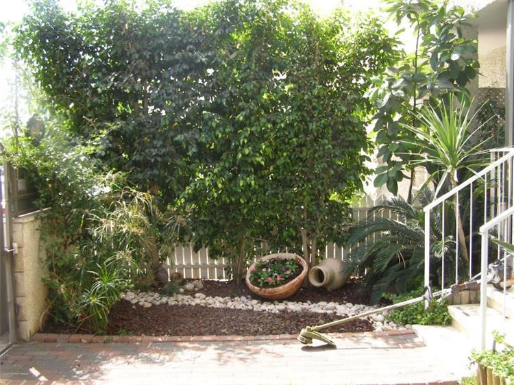 גן כניסה - אורן סבן- אדריכל נוף וגנים