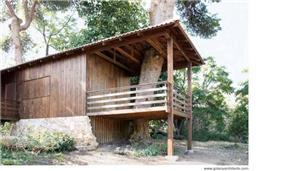 בית עץ הבנוי בין עצי אורן ותיקים - בנוי תוך מחזור מכולות