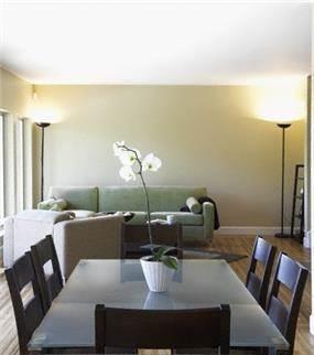 סלון+פינת אוכל, רצפת פרקט, קו נקי ומודרני, גווני אפור.