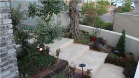 מדרגות כניסה בשילוב צמחייה, בעיצוב האדריכל דרור נח