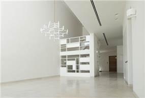 קיר נגרות ספרייה /מעקה למדרגות טולדו ליפשיץ