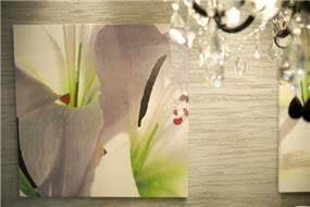 תמונות מעוצבות בעזרת הדפסה דיגיטאלית בשילוב עם צבעי שמן ושיבוץ אבני סברובסקי בעיצוב מקורי של ג'ני דיין