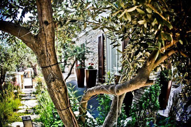 גינה בעיצוב גני עמרם בבית בכפר שמריהו