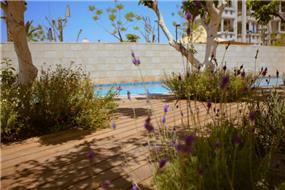 רצפת דק בדירת גן בעיצוב גני עמרם