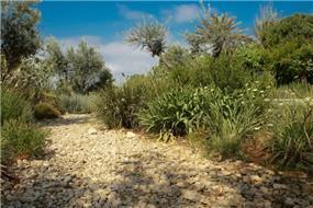 שביל ירידה לחוף קיסריה בעיצוב גני עמרם