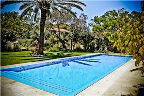 מבט אל הבריכה בחצר בעיצוב גני עמרם