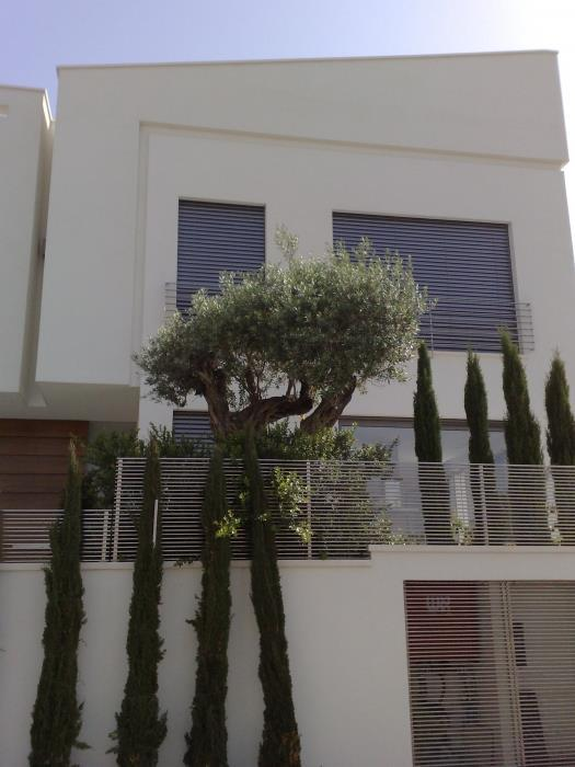 חזית בית, תכנון אדריכלי ראובן בלאום
