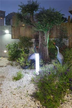 עיצוב גן בשילוב פסלים וגופי תאורה, של יוסי שאול YS-DESIGN
