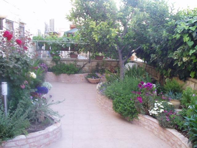 ערוגות בנויות בחצר