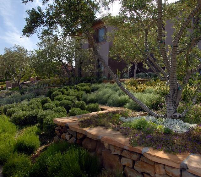 נוף - עלים ופרחים, תכנון והקמת גינות