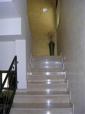מדרגות - יערה טל
