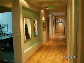 משרדי אלקליל - קוים וצבעים