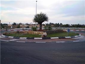 כיכר עם בניה וצמחיה של ירוק בעניים