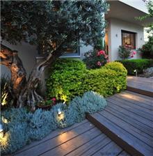 """חזית בית בעיצוב כרכום עיצוב נוף בע""""מ"""
