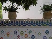 עיטור צבעוני בגינה