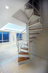 מדרגות לולייניות עם מעקה נפחות - קו נבון