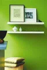צבע לקיר בגוון ירוק