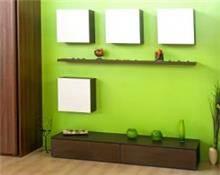 צבע קיר פנימי בגוון ירוק