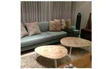ספה ושולחנות סלון