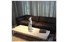 ספה ושולחן לבית
