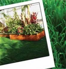 דשא מלאכותי רך