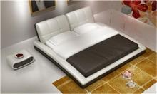 מיטת עור לבנה - היבואנים