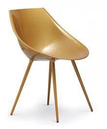 כיסא מוזהב - היבואנים
