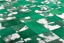 שטיח ירוק