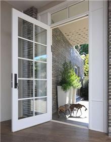 דלת ציר לבנה