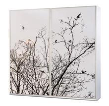 ארון הזזה ציפורים - אלבור רהיטים
