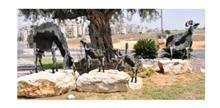 פסל חוץ עיזים משוטטות