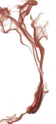 ציפוי מגנטי לדלת פילפל - FUNKYDOOR