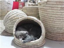 מיטה לכלב ולחתול