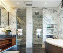 מקלחון חזית דלת אחת IG11174