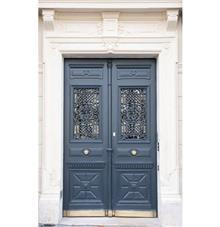ציפוי דלת כניסה ממגנט