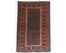 שטיח קווקזי לסלון - שטיחי אלי ששון